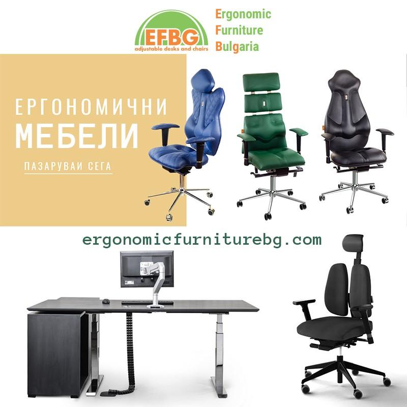 Изработка на онлайн магазин за Ергономични мебели