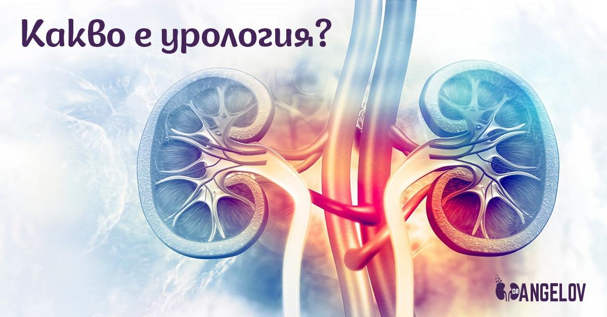 Уролог в Пловдив – Д-р Васил Ангелов